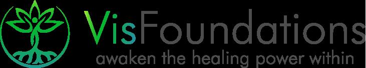 Vis Foundations Logo